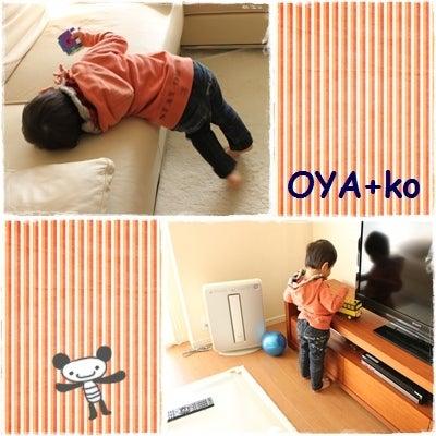 OYA+ko