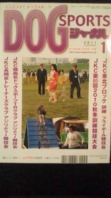 $モモ君&トトちゃんの日記-2010122921260000.jpg