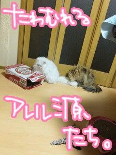 榊原ゆいオフィシャルブログ「LOVE×log」 Powered by Ameba-y_2011_0101_03