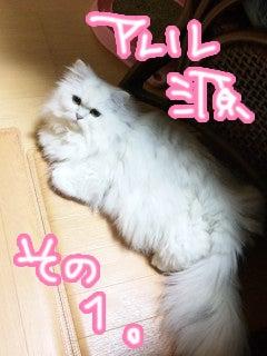 榊原ゆいオフィシャルブログ「LOVE×log」 Powered by Ameba-y_2011_0101_01