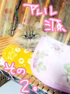 榊原ゆいオフィシャルブログ「LOVE×log」 Powered by Ameba-y_2011_0101_02