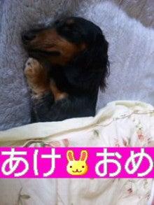 河村由紀★☆ゅきネェ☆のねぇ~♪ねぇ~♪♪聞いて(^∀^)/゛★-SH3E02850001.jpg