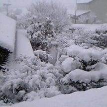 冬が終わる