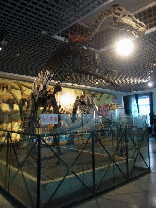 中国大連生活・観光旅行通信**-ハルピン 黒竜江省博物館