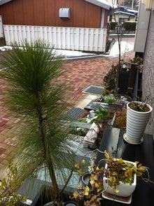 庭とインテリアのデザイン事務所 ジェイプランニングのオフィシャルブログ-大雪 花壇溶けた