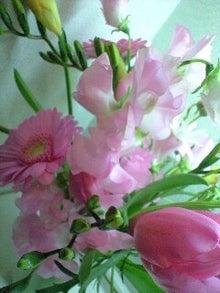ずれずれブログ…湘南で猫と暮らせば…-110124_2107~0001.jpg