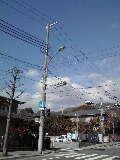 タロウちゃん-11-01-26_002~001.jpg