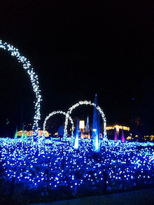 TOKYO Disney RESORT LIFE-DVC00012.jpg
