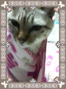 [*:・・:*yukinodays*:・・:*]q(・ω・*)ノ゙-2011012902420000.jpg