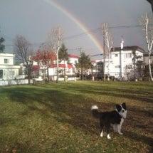 虹と王様がお君
