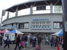 のほほん家族の野球観戦日記-湘南3