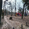 名城公園ラン。の画像