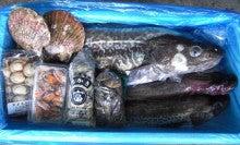 気仙沼の魚情報-タラなべ