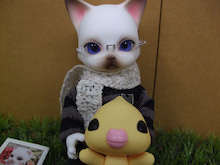 $ぱっつぁんブログ
