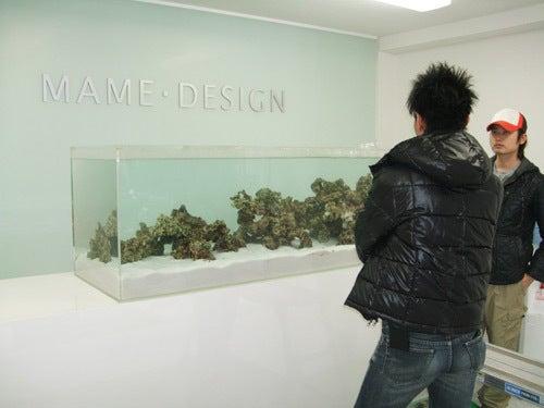 東京サンマリン店長のブログ-マメデザイン レイアウト6