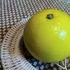 晩白柚の画像