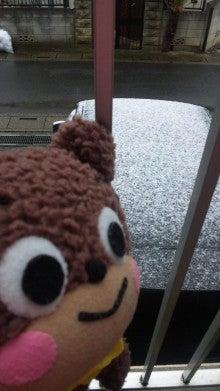 ぽけくまブログ-おひさしぶりぶり~!1