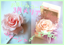 Plumerry(プルメリー)プリザーブドフラワースクール (千葉・浦安校)-メリア コサージュ