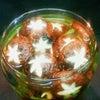 キュートなピクルスの画像