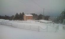 馬を愛する男のブログ Ebosikogen Hose Park -雪のホースパーク