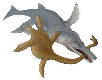 川崎悟司 オフィシャルブログ 古世界の住人 Powered by Ameba-クロノサウルス