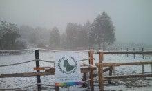 馬を愛する男のブログ Ebosikogen Hose Park -放馬エリアにはこんなに雪