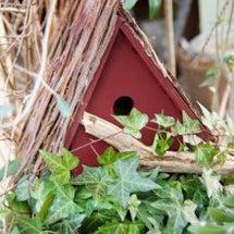 巣箱を作りました