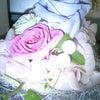 pink!pink!pink!の画像