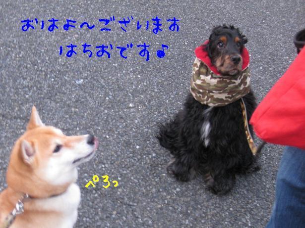 ケン子のブログ