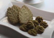ひろ茶んの茶畑日記