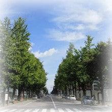 $札幌市中央区の整体 カラダとココロが軽くなる「整体院えん」-緑道