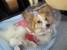 Gaia Prelude Hisashi Official Blog-201102261614001.jpg