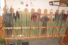 天日干し ひとめぼれの奥州市石川農場の米農家な日記ブログ