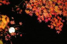 数楽者のボヤキ・ツブヤキ・ササヤキ-中学 数学 道徳 Mathematics Puzzles--天龍寺 紅葉と月