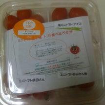 トマト食べ比べセット