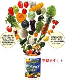 1日に必要なビタミン、ミネラルおよび水溶性、不溶性食物繊維が採れる野菜果物まるごとサプリメント
