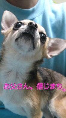 法律事務所のパラリーガル 行政書士(所沢市)のブログ-110227_2105~010001.jpg