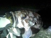 タカちゃんの夜釣日記-20110227212033.jpg