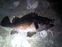 タカちゃんの夜釣日記-20110227185037.jpg