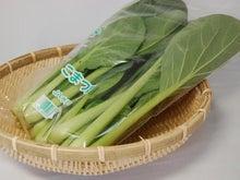 アルベンス BLOG-アルベンス小松菜