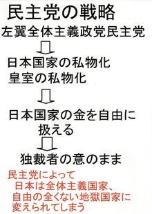 $日本人の進路-民主党の戦略01
