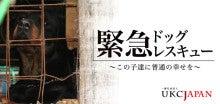 ぶっちゃ~'S のブログ-タグ