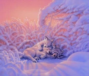 $☆動物と人を愛でつなごう♪チャネリングDEキラキラLife☆hitomisan☆