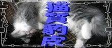 $猫質豹皮-bana