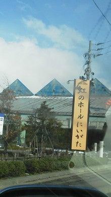染井前線-F1000630.jpg