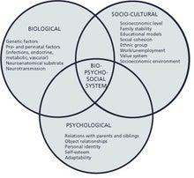 心理・社会的に痛み・カラダをみていますブログ-bio psycho social