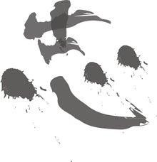 $岩本壮一郎の「鳴かぬなら鳴かせてみせようホトトギス」-岩本壮一郎の志