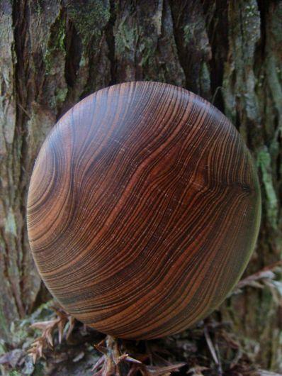 $木の魂ー屋久島から大自然の叡智をー-『かがみ』