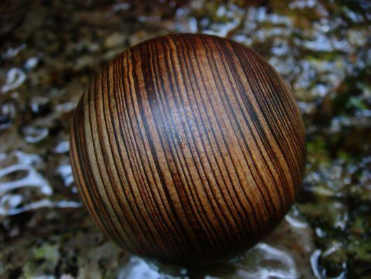 $木の魂ー屋久島から大自然の叡智をー-4センチ2