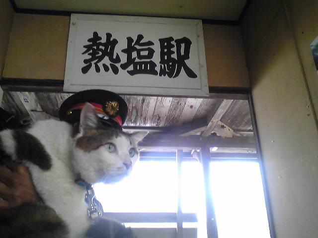 $駅長猫コトラの独り言~旧 片上鉄道 吉ヶ原駅勤務~-Image0251.jpg
